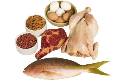 Consejos para la dieta de las proteinas